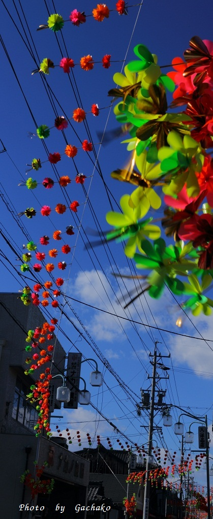 花飾りの街_e0241944_2273665.jpg
