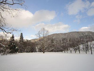 みそ作り体験と雪の森散策「くつきの森ビギナーズ+α」参加者募集中!!_f0212679_1452464.jpg