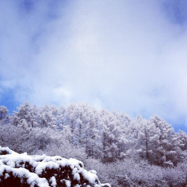 in Snowdome_d0028589_22132219.jpg