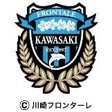 川崎フロンターレ綾町キャンプ情報_e0280693_9505116.jpg