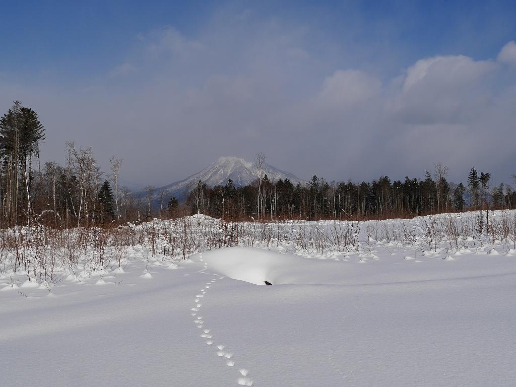1月9日、多峰古峰山_f0138096_1514222.jpg