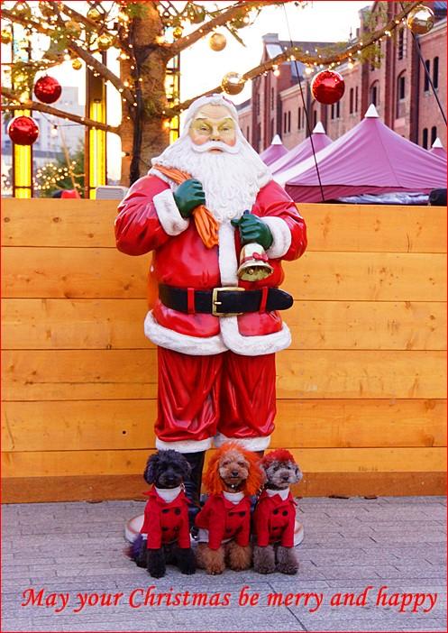 赤レンガ倉庫 横浜みなとみらい クリスマスイルミネーション撮影ツアー_b0145398_20403416.jpg