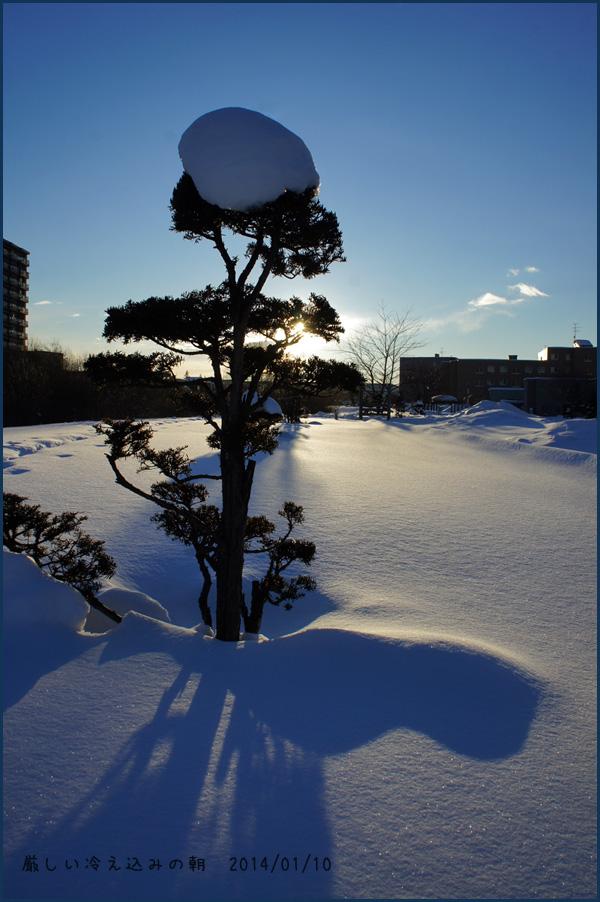 厳しい冷え込みの朝_b0019313_17305119.jpg