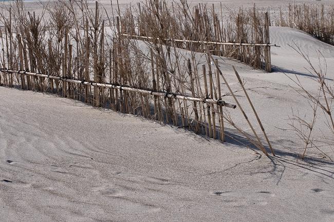 冬の浜辺_c0047422_08035109.jpg