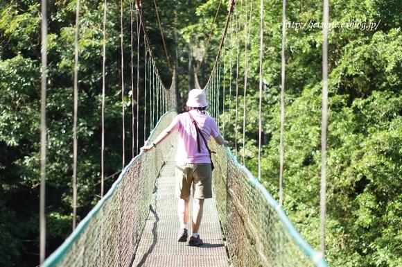 コスタリカへ(1) Rainforestを歩く_a0254243_8544151.jpg