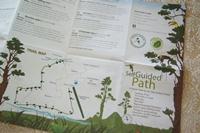 コスタリカへ(1) Rainforestを歩く_a0254243_9215988.jpg