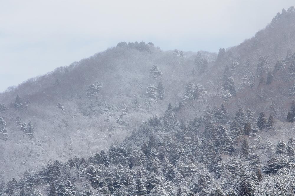 雪景色 2013 <大原>             _f0021869_22574350.jpg