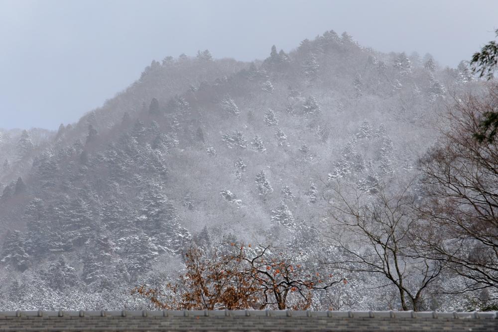 雪景色 2013 <大原>             _f0021869_22585254.jpg