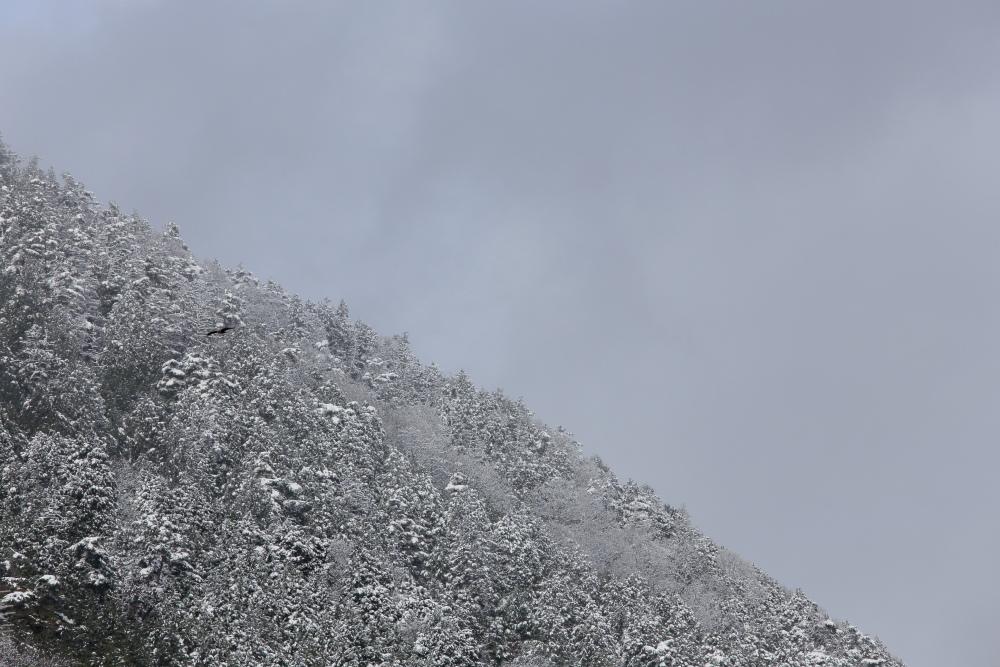 雪景色 2013 <大原>             _f0021869_230672.jpg