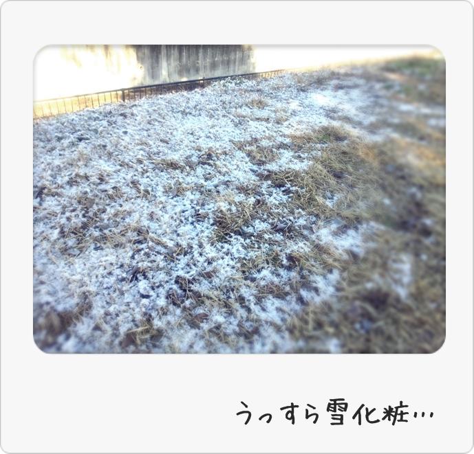 寒波!!!_d0155273_14331654.jpg