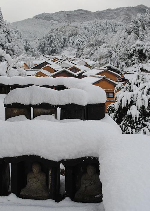 雪の日_d0227889_15142190.jpg