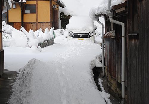 雪の日_d0227889_15164057.jpg