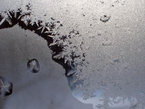 凍み大根、干しました_f0236291_10483259.jpg