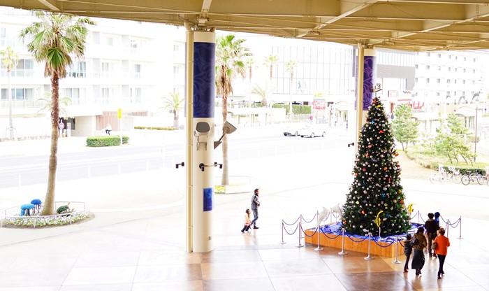 メリークリスマス in 新江ノ島水族館 2013_b0145398_21233832.jpg