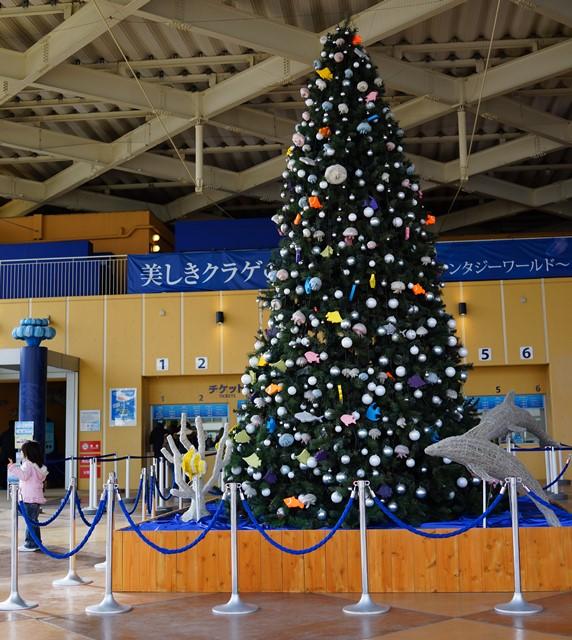メリークリスマス in 新江ノ島水族館 2013_b0145398_21241968.jpg