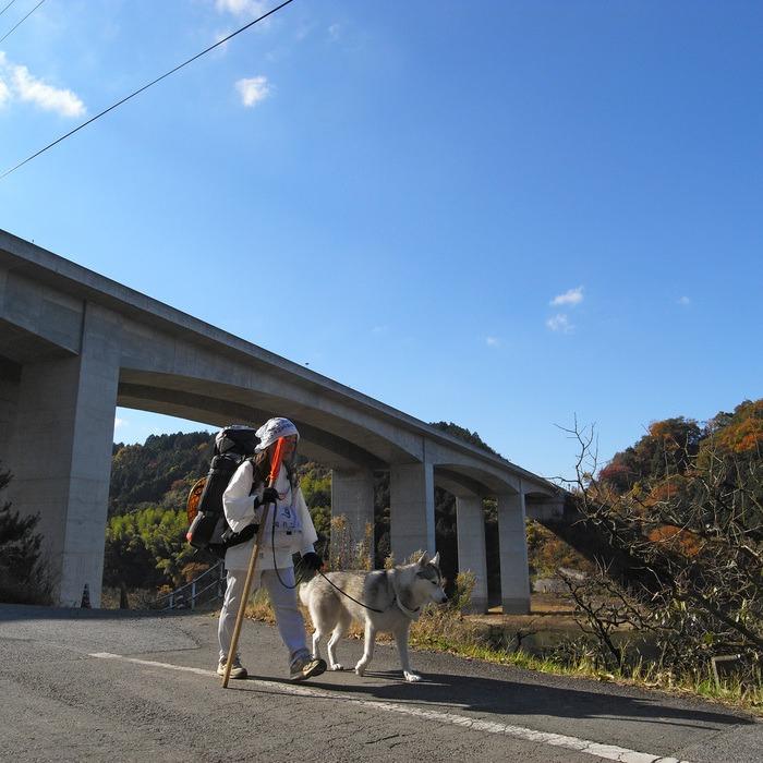 Memory of the second pilgrimage with husky HANA II_c0049299_18213693.jpg