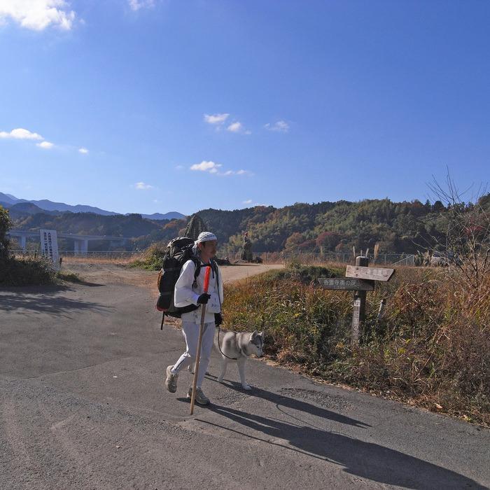 Memory of the second pilgrimage with husky HANA II_c0049299_1822068.jpg