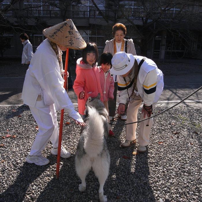 Memory of the second pilgrimage with husky HANA II_c0049299_183854100.jpg