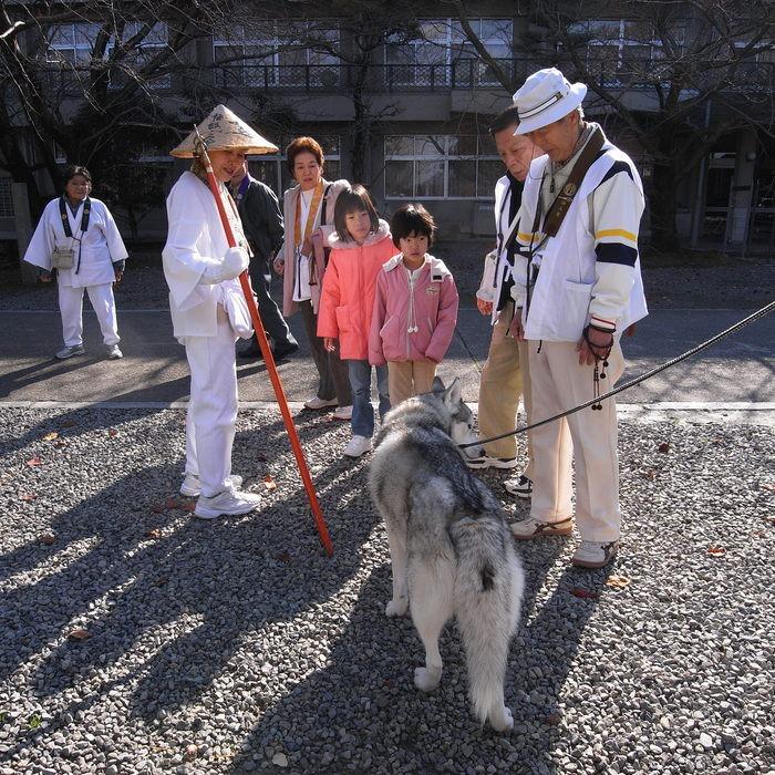 Memory of the second pilgrimage with husky HANA II_c0049299_1839204.jpg