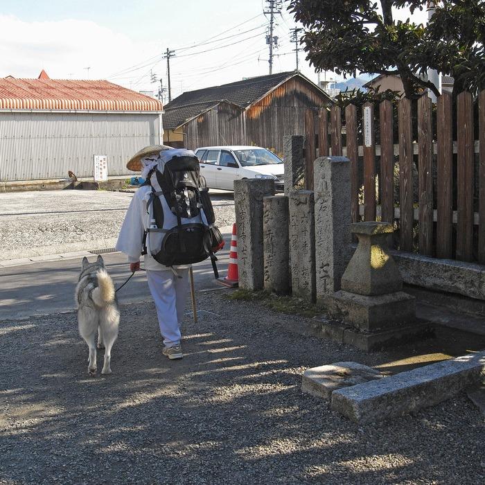 Memory of the second pilgrimage with husky HANA II_c0049299_18432324.jpg