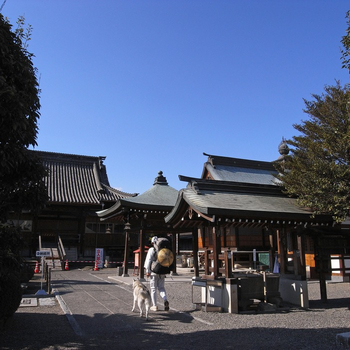 Memory of the second pilgrimage with husky HANA II_c0049299_1844723.jpg