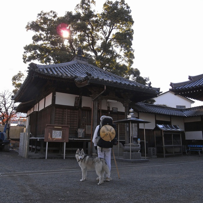 Memory of the second pilgrimage with husky HANA II_c0049299_18461332.jpg