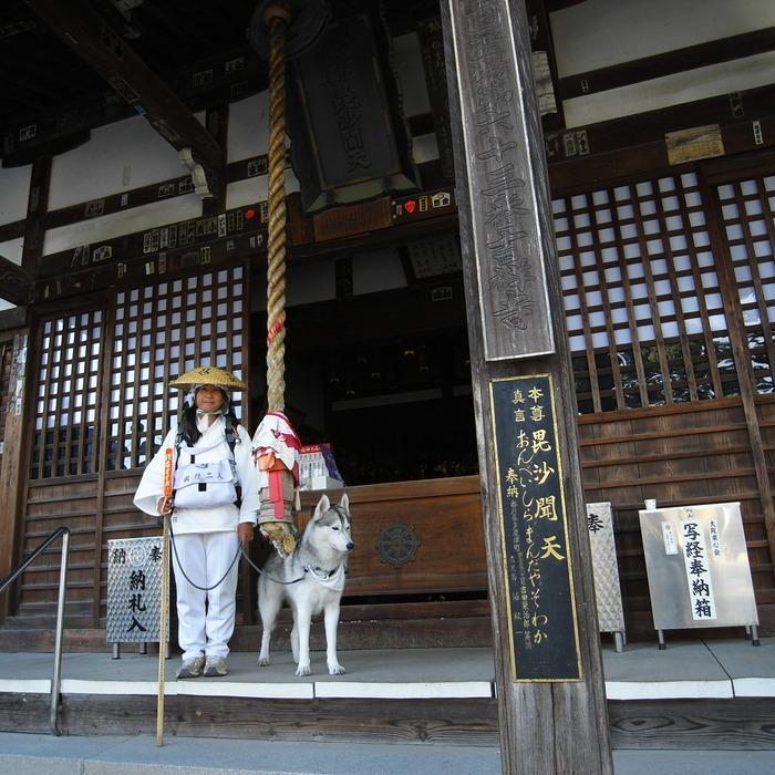 Memory of the second pilgrimage with husky HANA II_c0049299_18462994.jpg