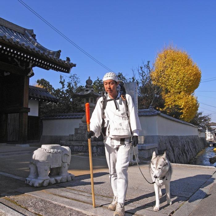 Memory of the second pilgrimage with husky HANA II_c0049299_18472826.jpg