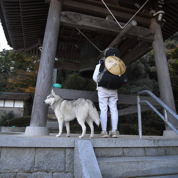 Memory of the second pilgrimage with husky HANA II_c0049299_18505988.jpg
