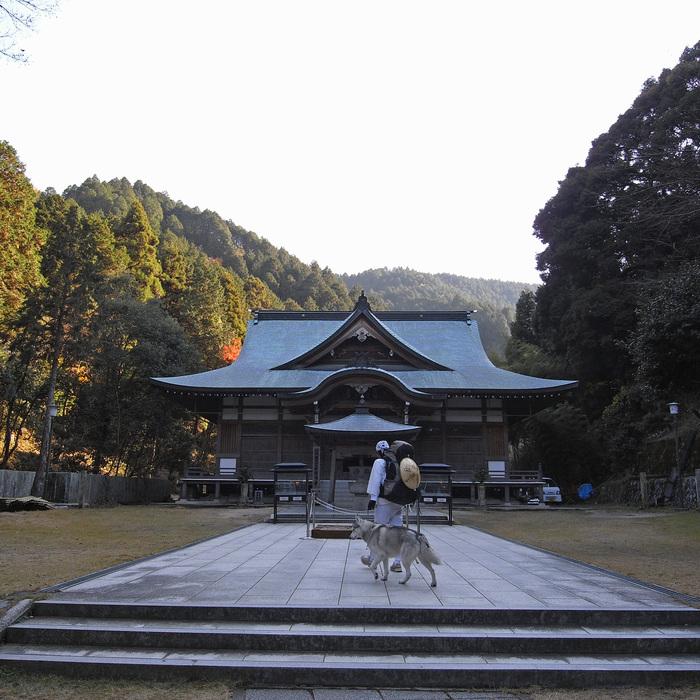 Memory of the second pilgrimage with husky HANA II_c0049299_18514726.jpg