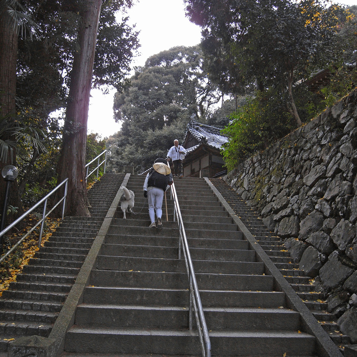 Memory of the second pilgrimage with husky HANA II_c0049299_18522974.jpg