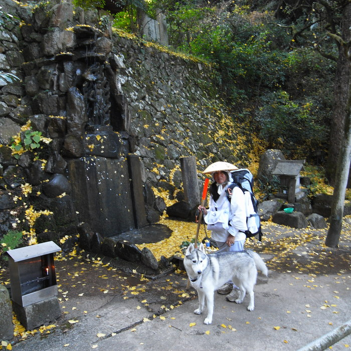 Memory of the second pilgrimage with husky HANA II_c0049299_18534259.jpg