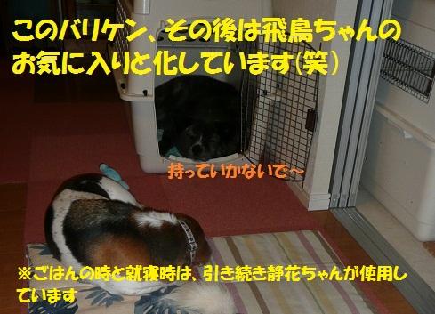 f0121712_22485640.jpg