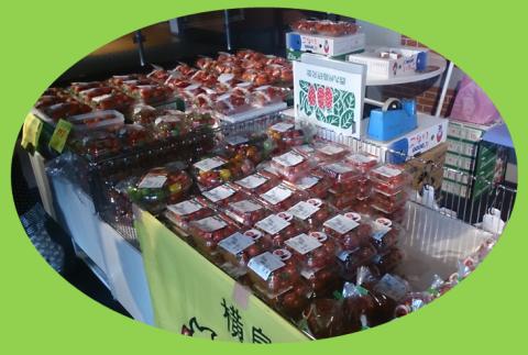 2014年1月11・12日「玉名市横島物産展」♪_b0228113_11054900.png