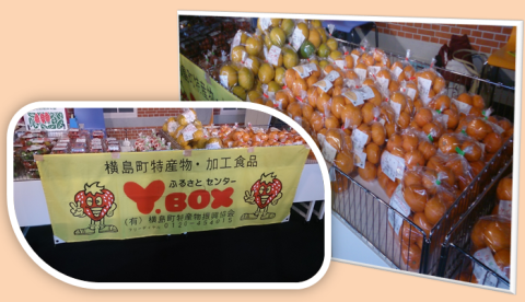 2014年1月11・12日「玉名市横島物産展」♪_b0228113_11055708.png