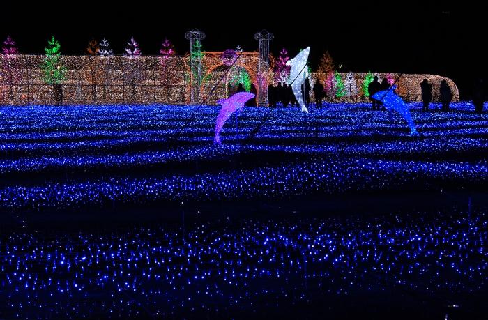 大阪城3Dマッピング_e0232054_10523069.jpg