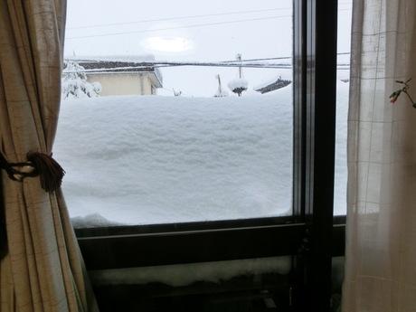 降ったる雪かな・雀食堂繁盛_a0203003_9122717.jpg