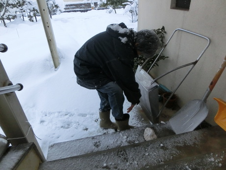 降ったる雪かな・雀食堂繁盛_a0203003_912571.jpg