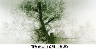 b0044404_19245177.jpg