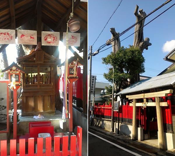 長楽寺跡、クスノキの巨大な枯木_a0000006_11562585.jpg