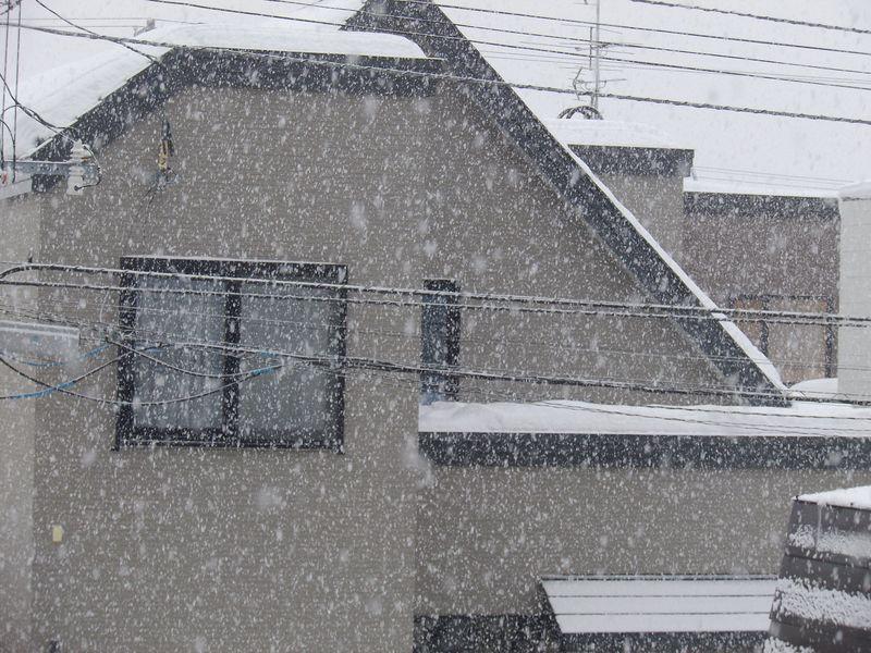 豪雪の日にはデジタル美術館でも散歩しよう_c0025115_23281021.jpg