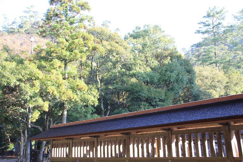 日本神話の旅 【出雲大社】_c0011649_21131628.jpg