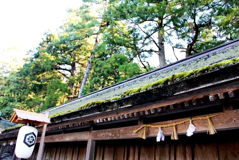 日本神話の旅 【出雲大社】_c0011649_2120442.jpg