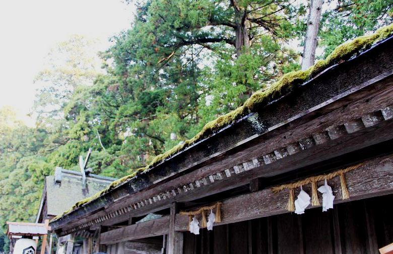 日本神話の旅 【出雲大社】_c0011649_23414939.jpg
