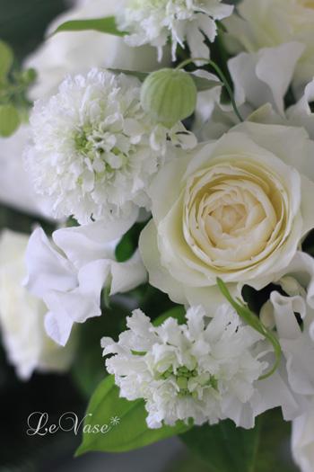 春の香り〜♪_e0158653_23532556.jpg