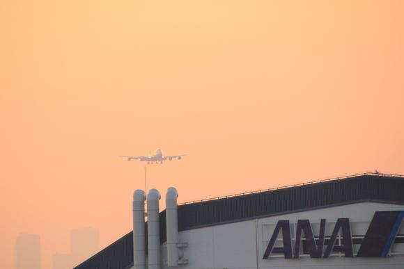 伊丹空港レポ ボーイング747-ダッシュ400 テクノジャンボ飛来_d0202264_8361834.jpg