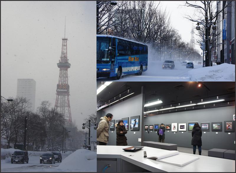 吹雪の中の写真展&成人式_b0019313_1883629.jpg