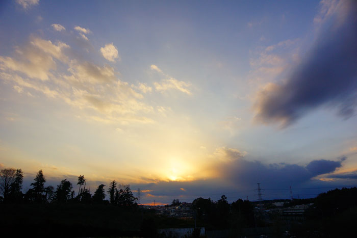 成人の日の夕_e0077521_2143710.jpg
