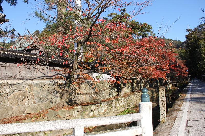 日本神話の旅 【出雲大社】_c0011649_8222682.jpg