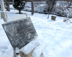 雪です。_d0050155_23154408.jpg